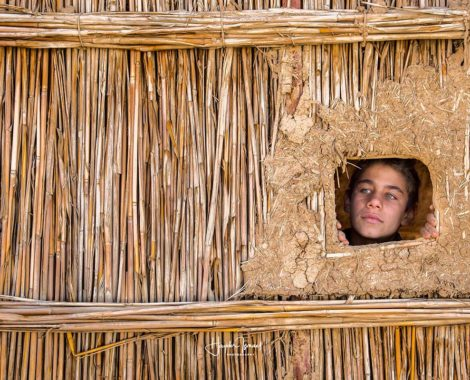 Iraqi boy from Marshes